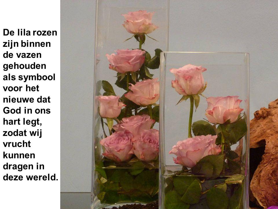 De lila rozen zijn binnen de vazen gehouden als symbool voor het nieuwe dat God in ons hart legt, zodat wij vrucht kunnen dragen in deze wereld.