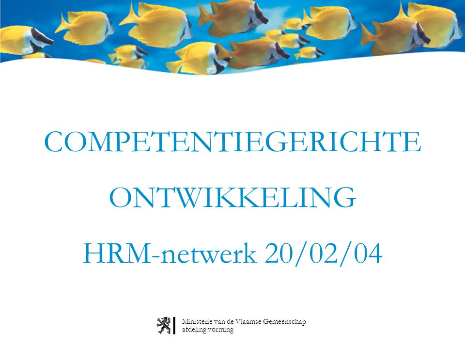 Ministerie van de Vlaamse Gemeenschap afdeling vorming COMPETENTIEGERICHTE ONTWIKKELING HRM-netwerk 20/02/04