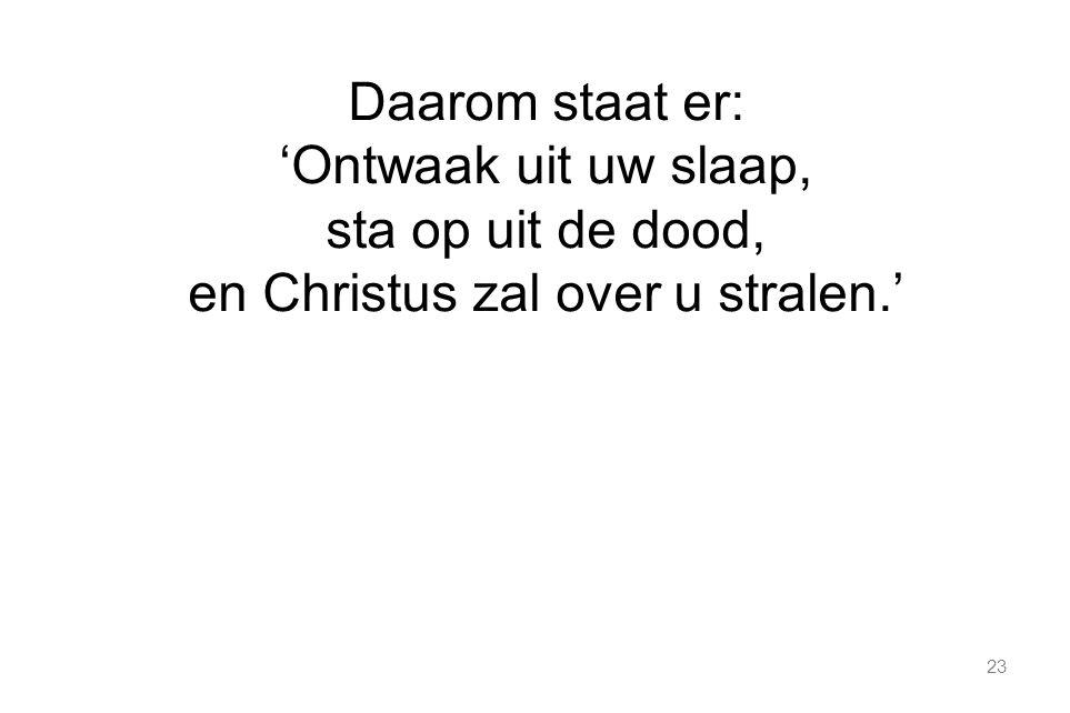 23 Daarom staat er: 'Ontwaak uit uw slaap, sta op uit de dood, en Christus zal over u stralen.'