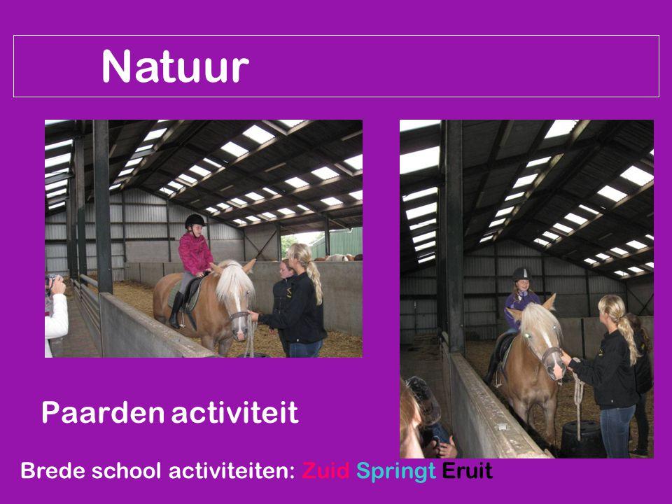 Natuur Paarden activiteit Brede school activiteiten: Zuid Springt Eruit