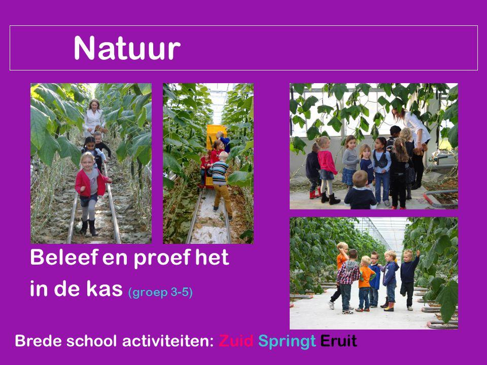 Natuur Beleef en proef het in de kas (groep 3-5) Brede school activiteiten: Zuid Springt Eruit