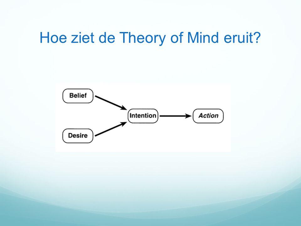 Hoe ziet de Theory of Mind eruit?