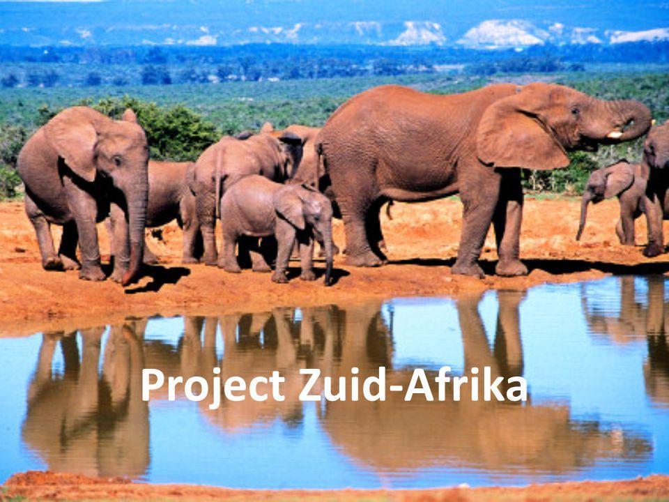 Project Zuid-Afrika