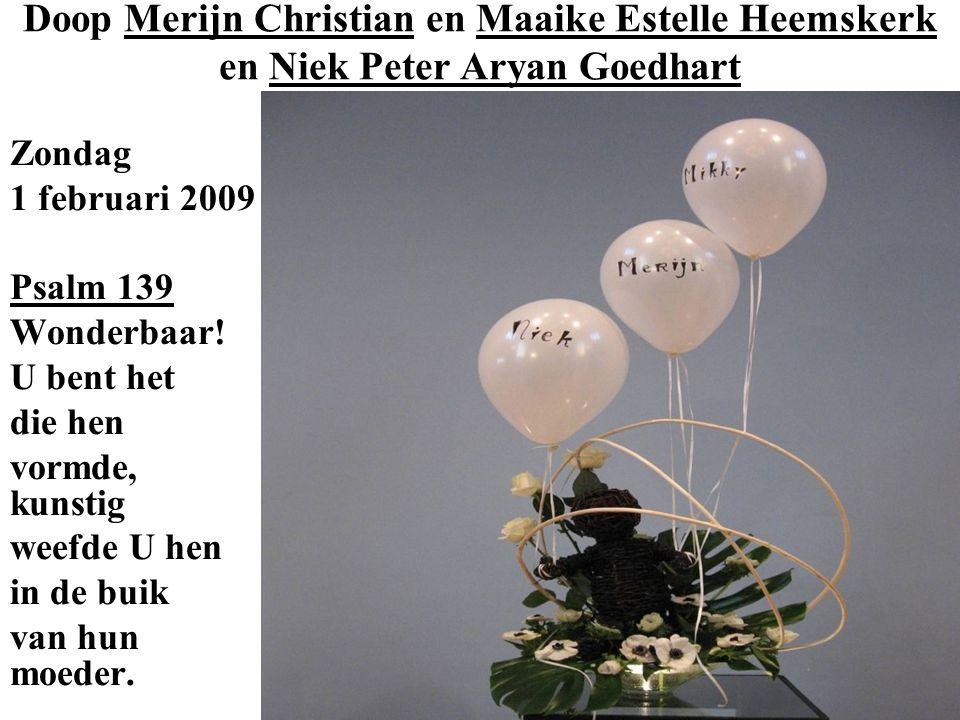 Doop Merijn Christian en Maaike Estelle Heemskerk en Niek Peter Aryan Goedhart Zondag 1 februari 2009 Psalm 139 Wonderbaar.