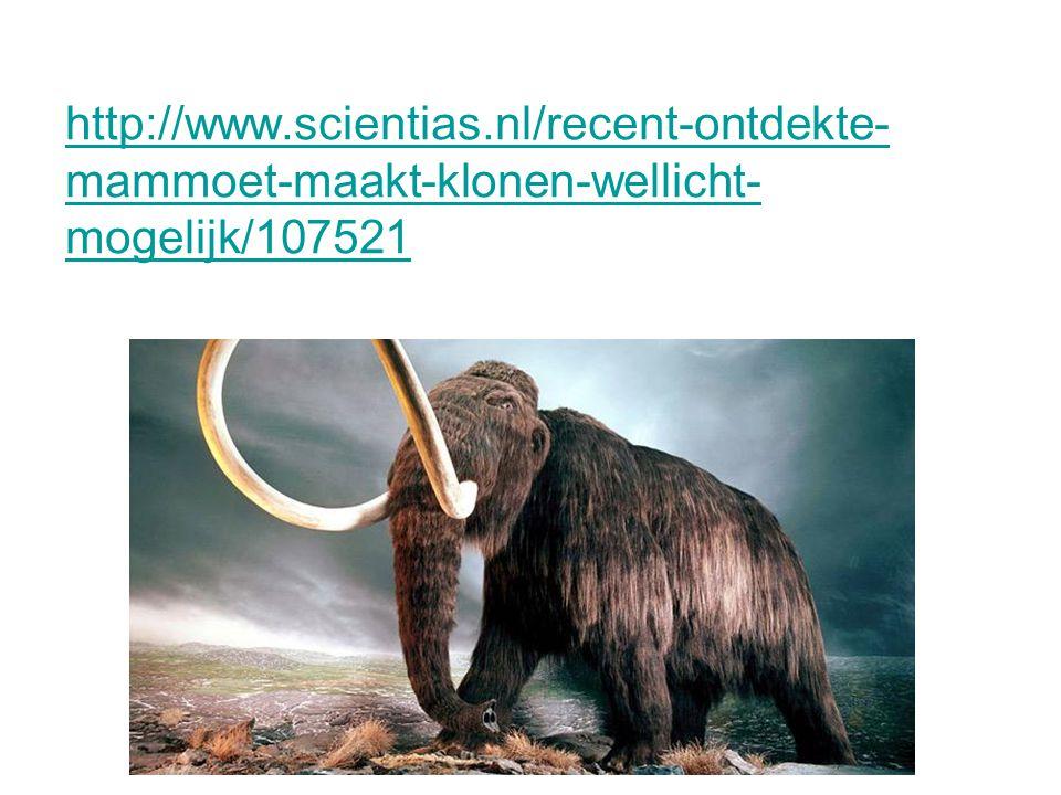 http://www.scientias.nl/recent-ontdekte- mammoet-maakt-klonen-wellicht- mogelijk/107521