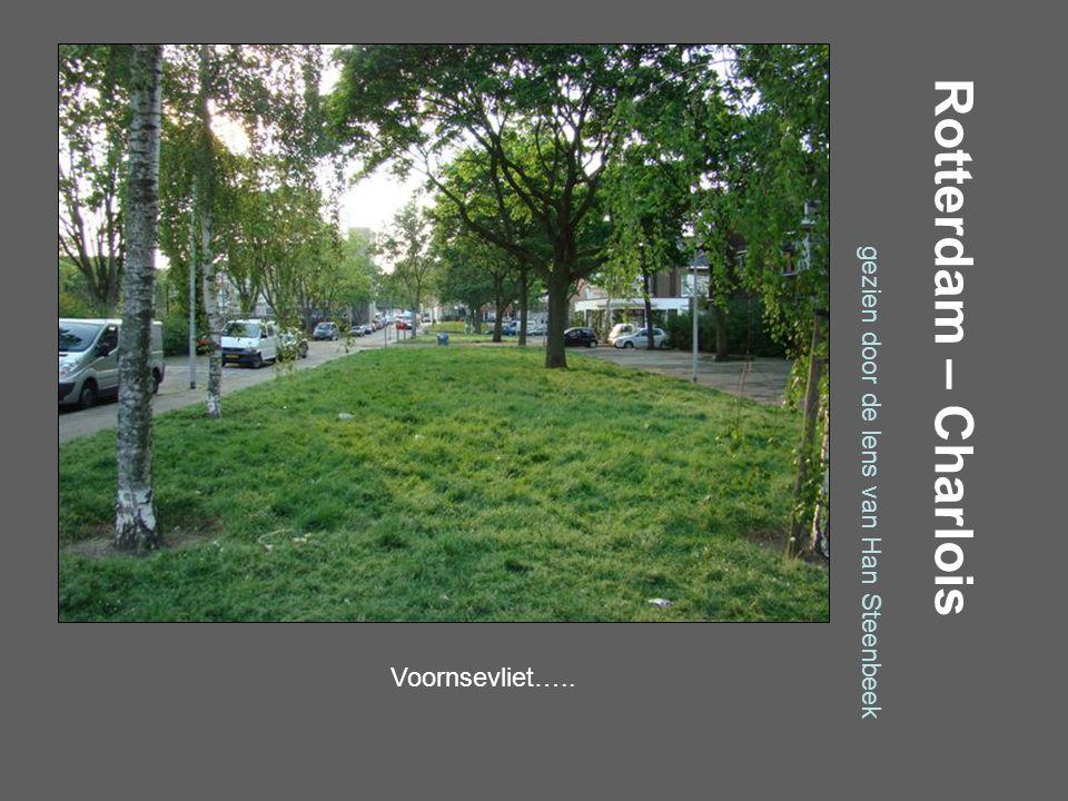 Rotterdam – Charlois gezien door de lens van Han Steenbeek Verboomstraat…..