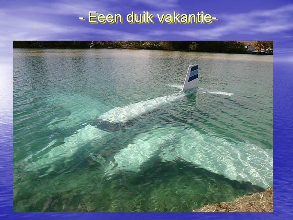 - Eeen duik vakantie-
