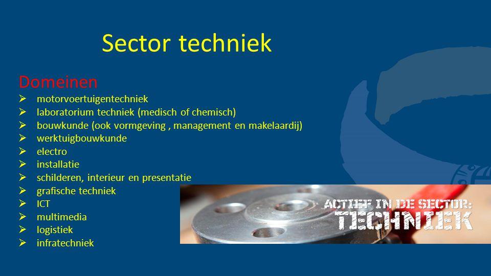 Sector techniek Domeinen  motorvoertuigentechniek  laboratorium techniek (medisch of chemisch)  bouwkunde (ook vormgeving, management en makelaardi