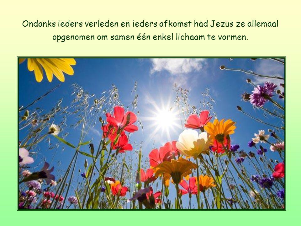 Ondanks ieders verleden en ieders afkomst had Jezus ze allemaal opgenomen om samen één enkel lichaam te vormen.