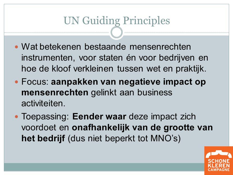 UN Guiding Principles Wat betekenen bestaande mensenrechten instrumenten, voor staten én voor bedrijven en hoe de kloof verkleinen tussen wet en praktijk.