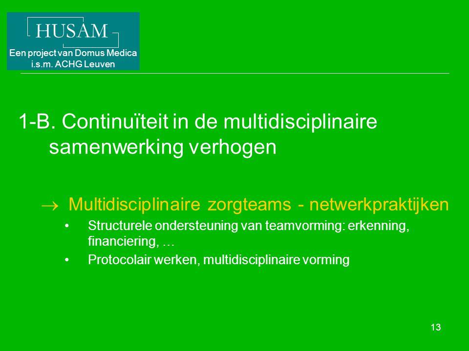 HUSAM Een project van Domus Medica i.s.m. ACHG Leuven 13 1-B. Continuïteit in de multidisciplinaire samenwerking verhogen  Multidisciplinaire zorgtea