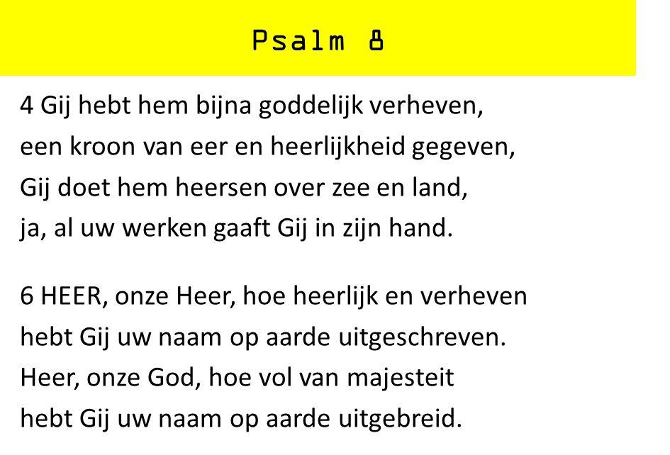 Psalm 8 4 Gij hebt hem bijna goddelijk verheven, een kroon van eer en heerlijkheid gegeven, Gij doet hem heersen over zee en land, ja, al uw werken ga