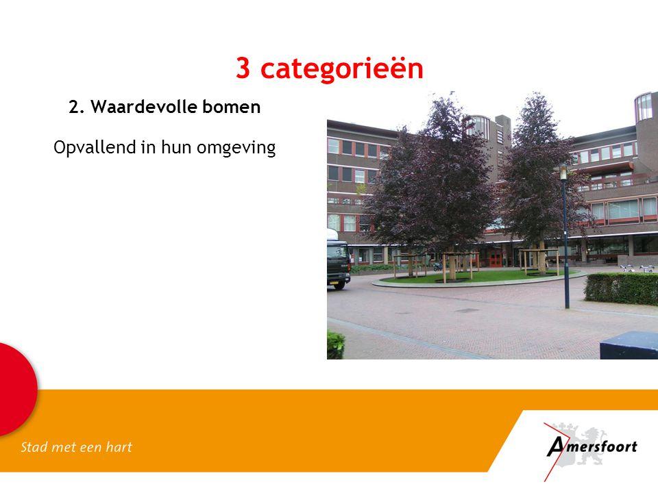 2. Waardevolle bomen Opvallend in hun omgeving 3 categorieën