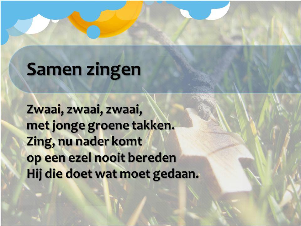 Samen zingen Zwaai, zwaai, zwaai, met jonge groene takken. Zing, nu nader komt op een ezel nooit bereden Hij die doet wat moet gedaan.