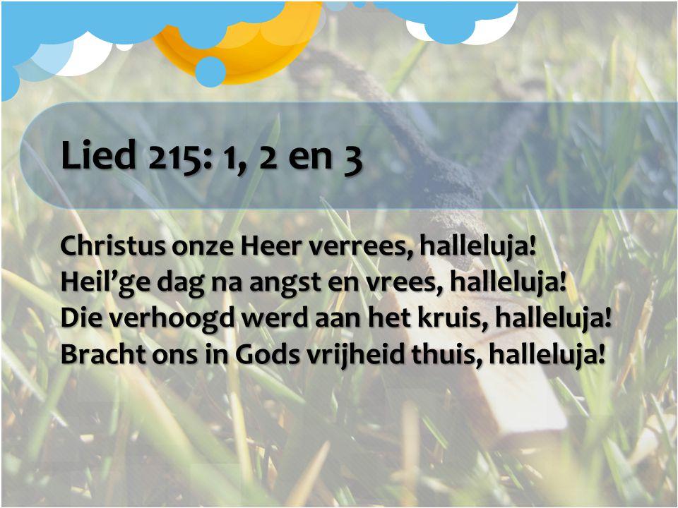 Lied 215: 1, 2 en 3 Christus onze Heer verrees, halleluja! Heil'ge dag na angst en vrees, halleluja! Die verhoogd werd aan het kruis, halleluja! Brach