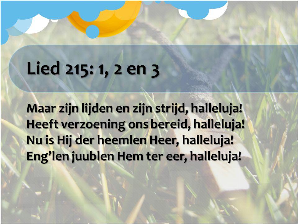 Lied 215: 1, 2 en 3 Maar zijn lijden en zijn strijd, halleluja! Heeft verzoening ons bereid, halleluja! Nu is Hij der heemlen Heer, halleluja! Eng'len