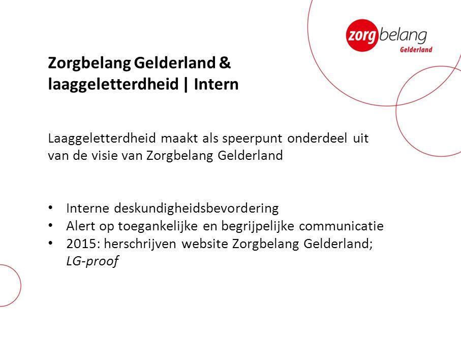 Zorgbelang Gelderland & laaggeletterdheid | Intern Laaggeletterdheid maakt als speerpunt onderdeel uit van de visie van Zorgbelang Gelderland Interne