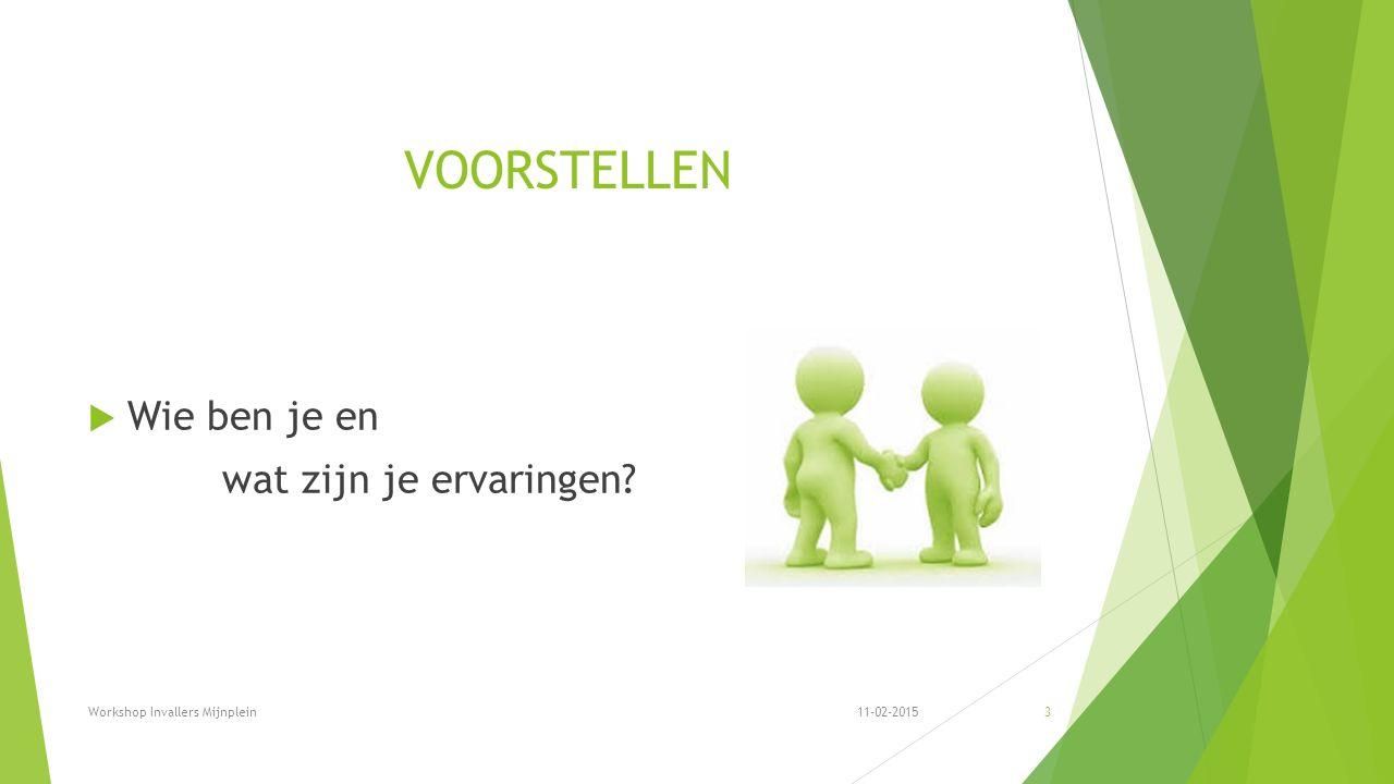 VOORSTELLEN  Wie ben je en wat zijn je ervaringen 11-02-2015Workshop Invallers Mijnplein3