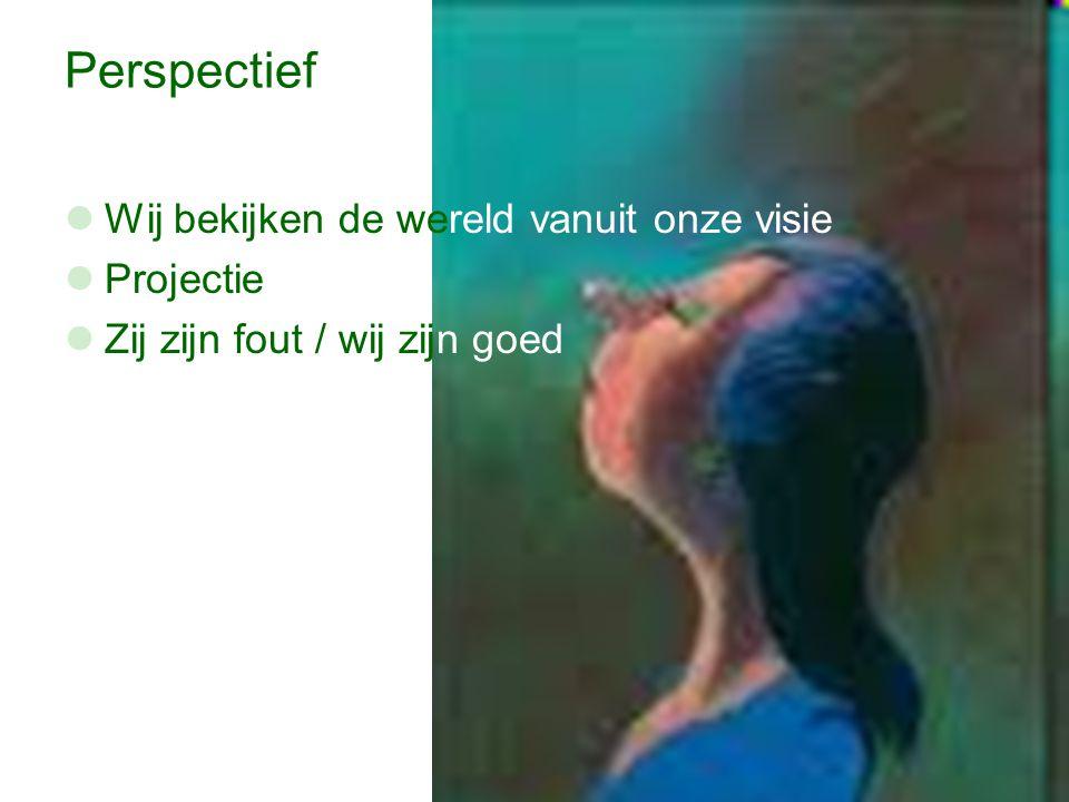 Perspectief Wij bekijken de wereld vanuit onze visie Projectie Zij zijn fout / wij zijn goed
