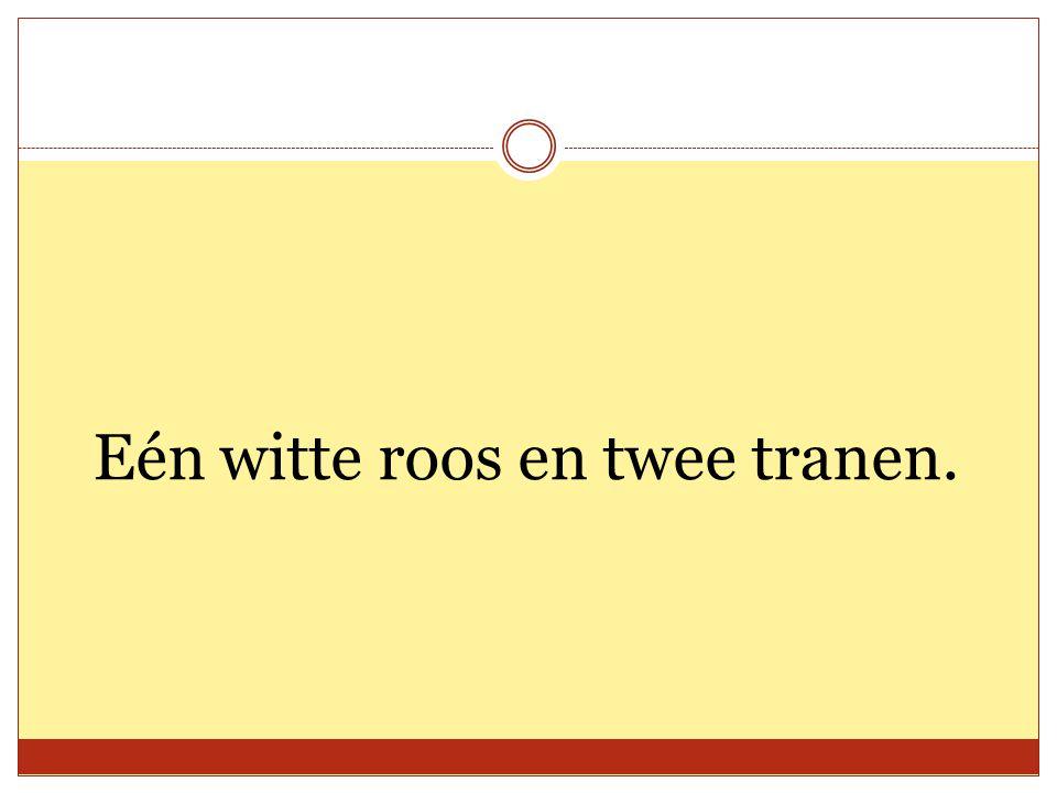 Eén witte roos en twee tranen.