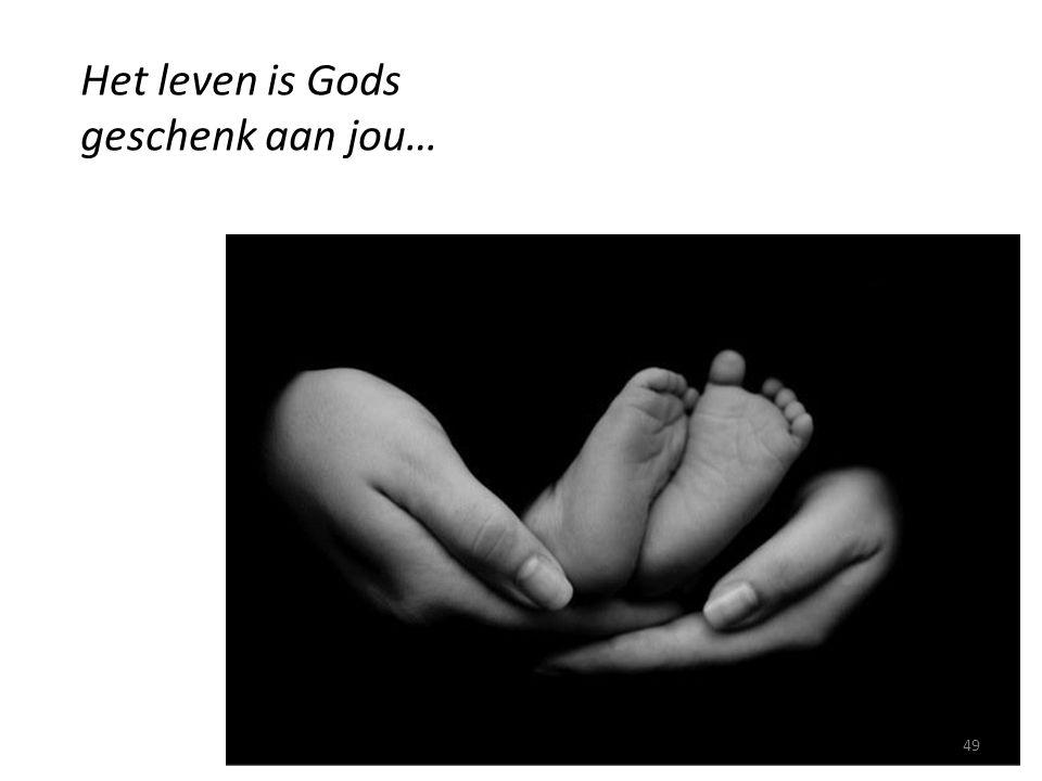 Het leven is Gods geschenk aan jou… 49