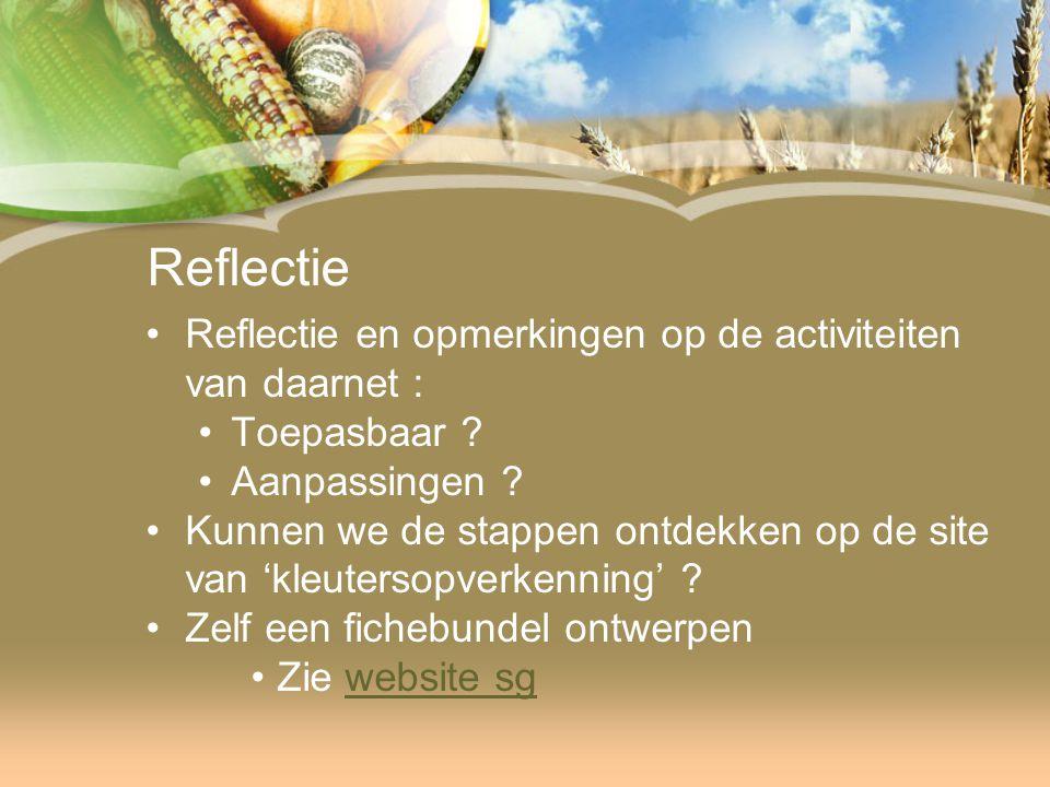 Reflectie Reflectie en opmerkingen op de activiteiten van daarnet : Toepasbaar .