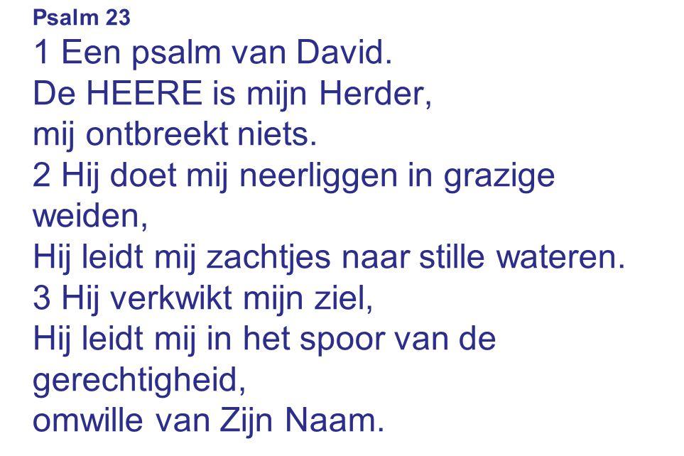 Psalm 23 1 Een psalm van David. De HEERE is mijn Herder, mij ontbreekt niets.
