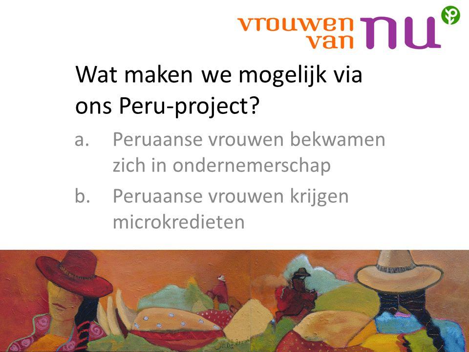 Wat maken we mogelijk via ons Peru-project.