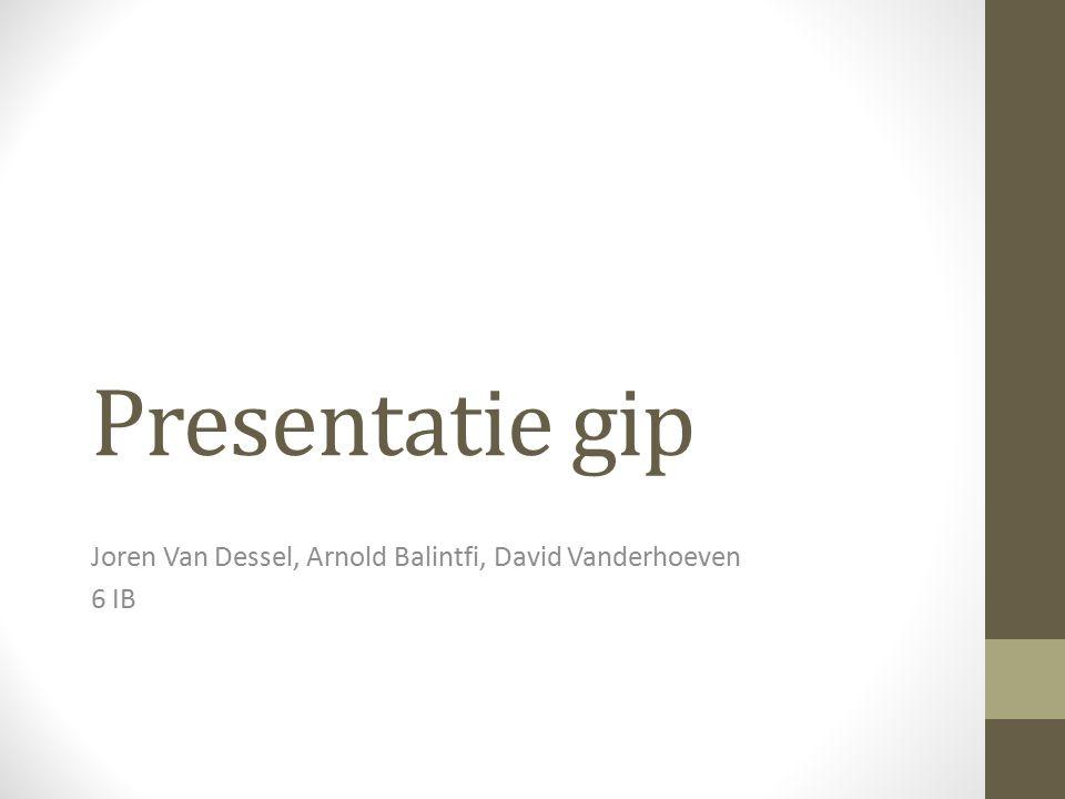 Presentatie gip Joren Van Dessel, Arnold Balintfi, David Vanderhoeven 6 IB