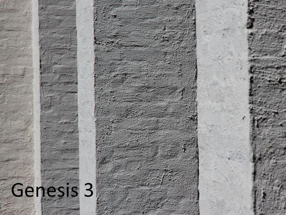 De schepping van de mens 1 Genesis 3