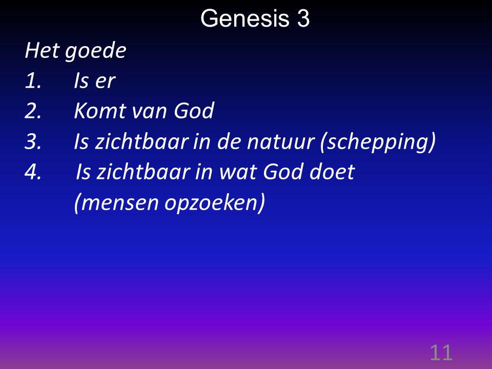 11 Genesis 3 Het goede 1.Is er 2.Komt van God 3.Is zichtbaar in de natuur (schepping) 4.
