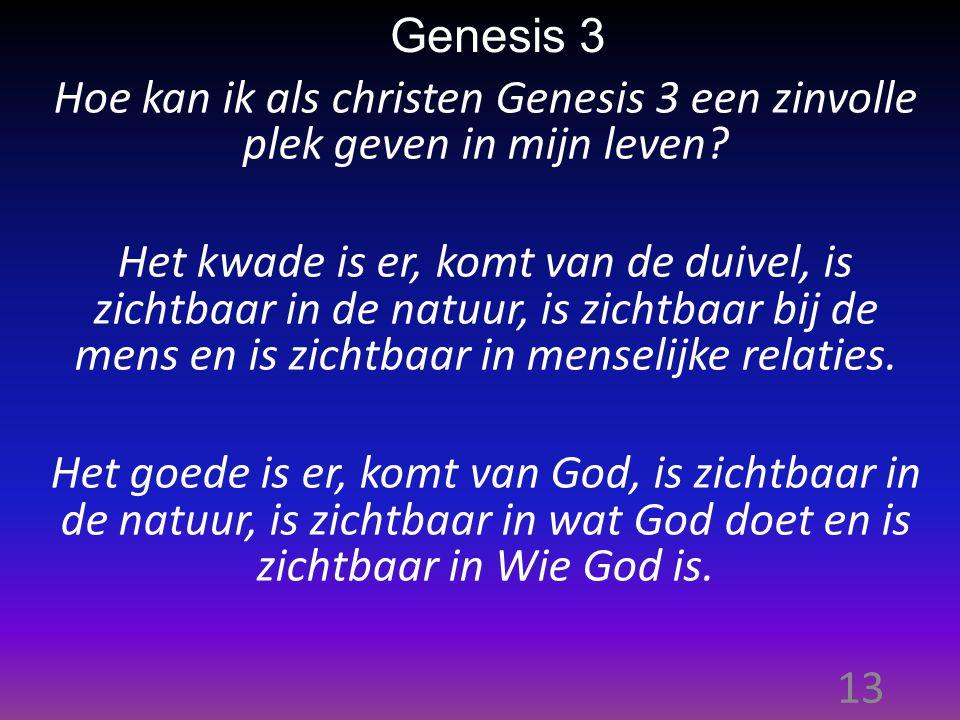 13 Genesis 3 Hoe kan ik als christen Genesis 3 een zinvolle plek geven in mijn leven.