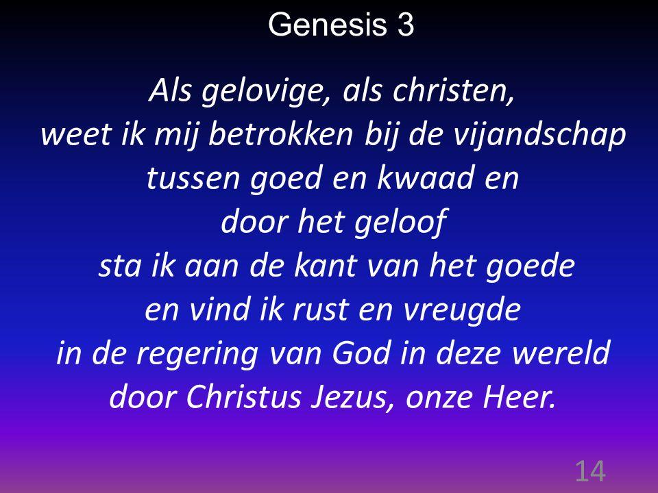 14 Genesis 3 Als gelovige, als christen, weet ik mij betrokken bij de vijandschap tussen goed en kwaad en door het geloof sta ik aan de kant van het goede en vind ik rust en vreugde in de regering van God in deze wereld door Christus Jezus, onze Heer.