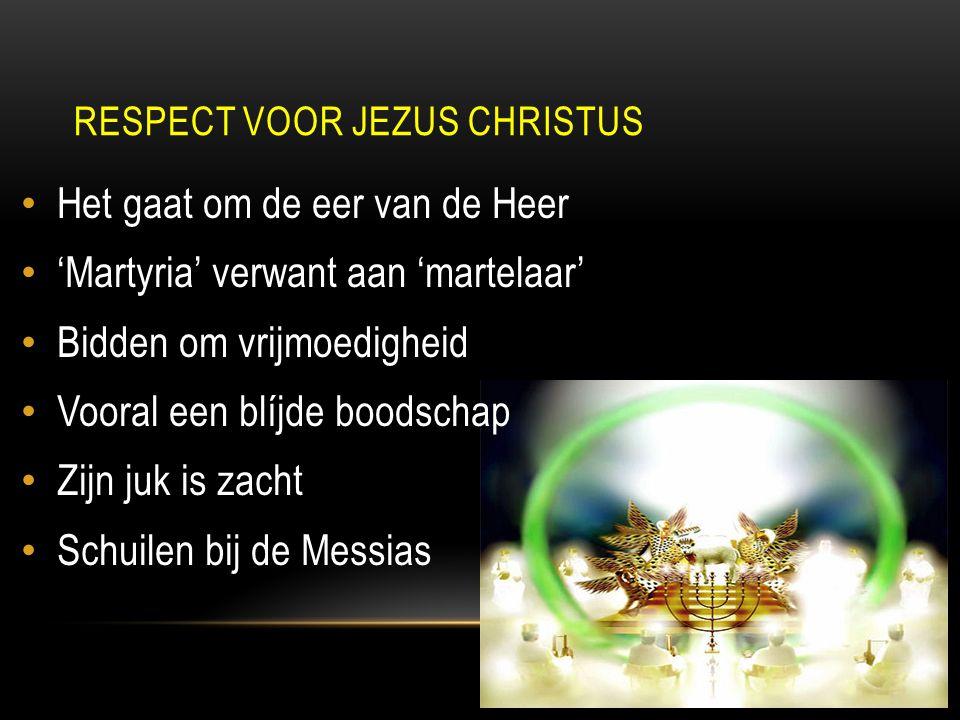 Het gaat om de eer van de Heer 'Martyria' verwant aan 'martelaar' Bidden om vrijmoedigheid Vooral een blíjde boodschap Zijn juk is zacht Schuilen bij de Messias RESPECT VOOR JEZUS CHRISTUS