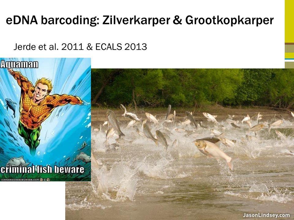 eDNA barcoding: Zilverkarper & Grootkopkarper Jerde et al. 2011 & ECALS 2013