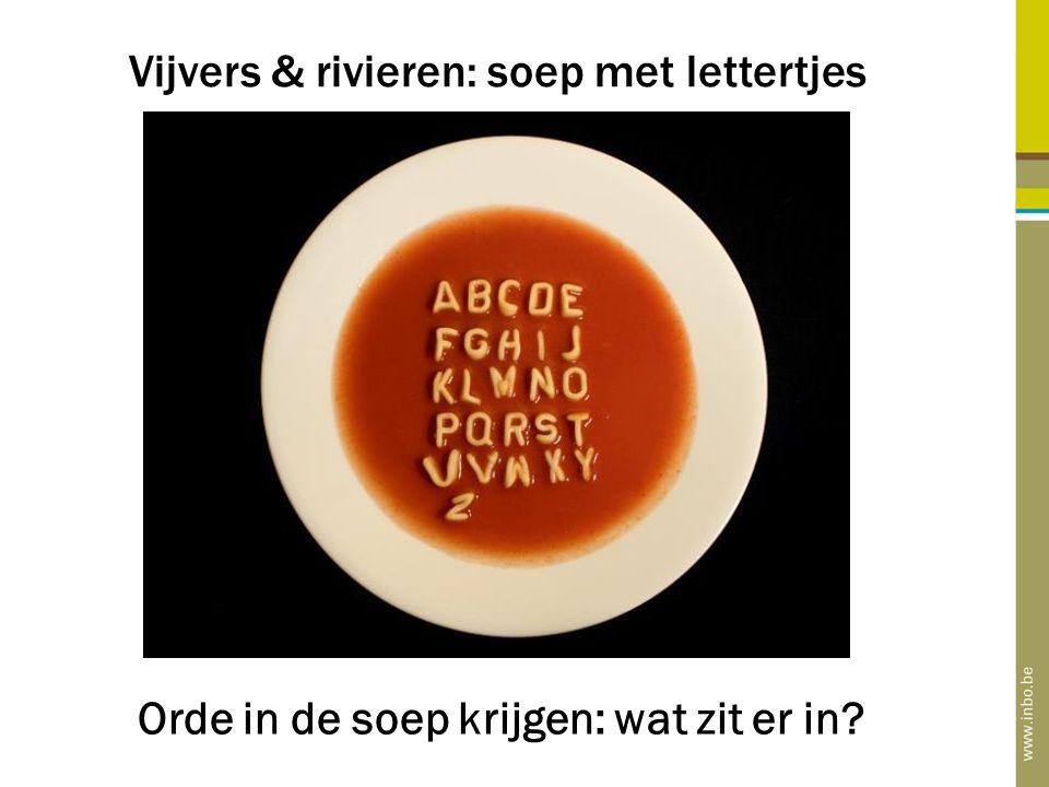 Vijvers & rivieren: soep met lettertjes Orde in de soep krijgen: wat zit er in?