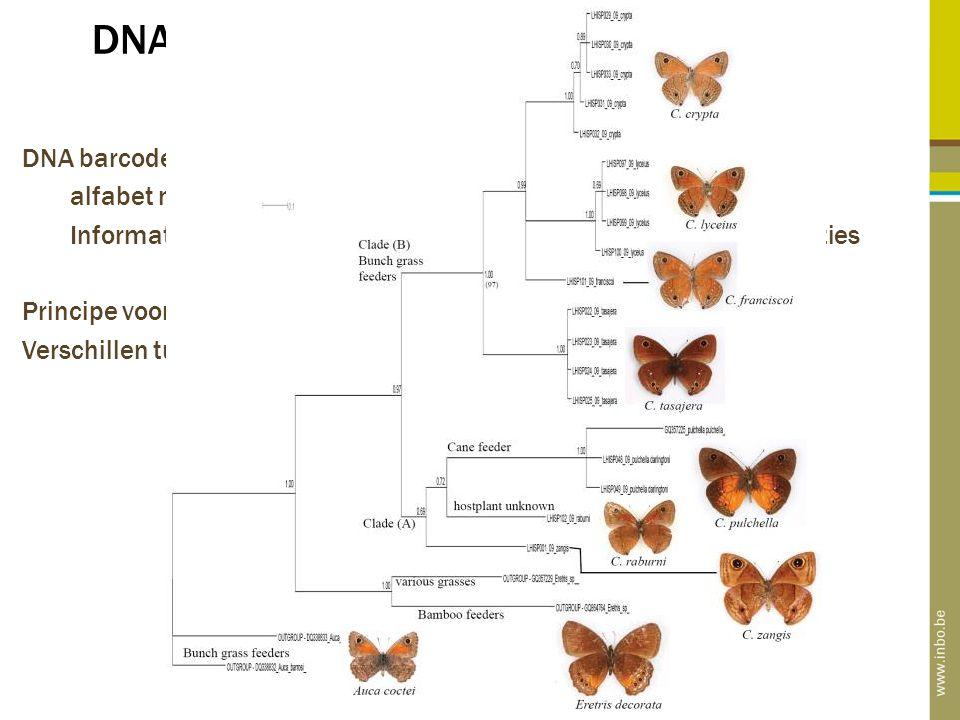 DNA barcodes: de genetische ID van elk organisme DNA barcodes: de genetische vingerafdruk van elk organisme alfabet met slechts vier letters: A, C, T, G Informatie in slechts tien letters: 4 10 > 1 miljoen unieke combinaties Principe voor herkenning soorten: Verschillen tussen soorten >> binnen soorten