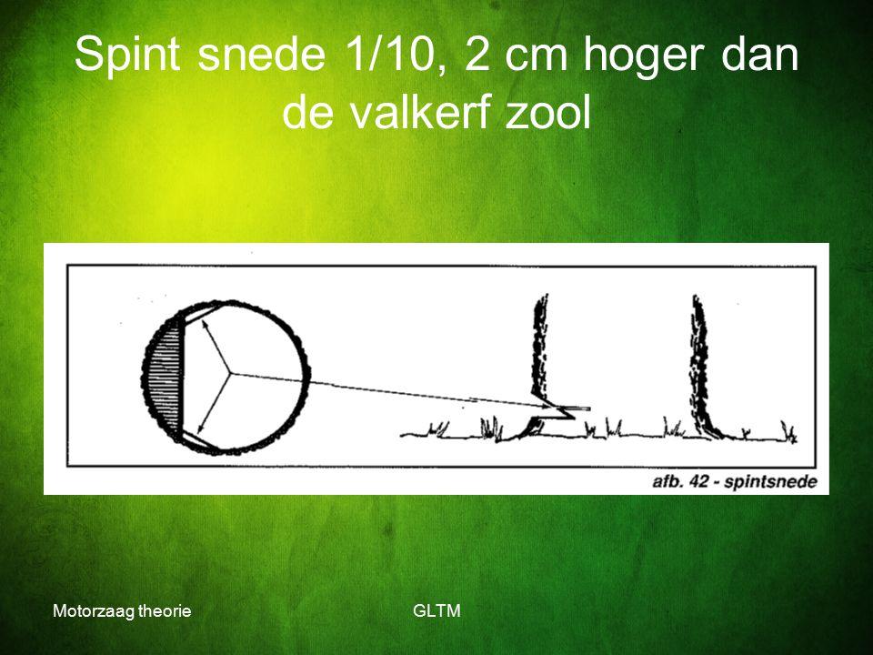 Motorzaag theorieGLTM Spint snede 1/10, 2 cm hoger dan de valkerf zool