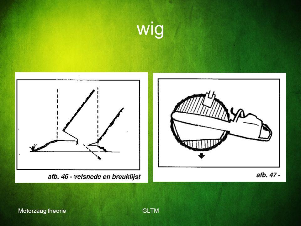 Motorzaag theorieGLTM wig