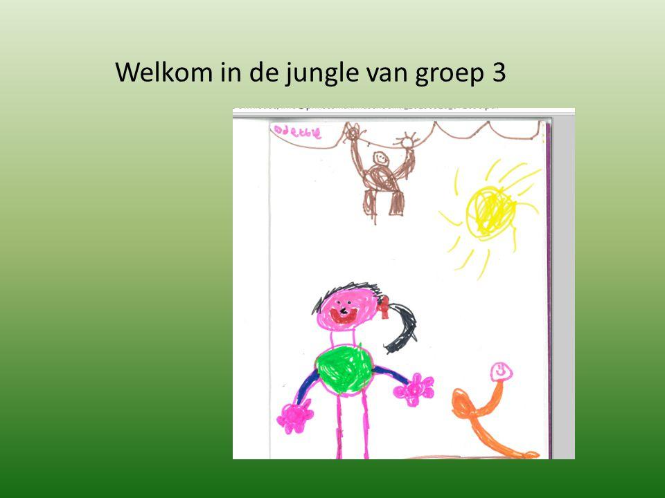 Welkom in de jungle van groep 3
