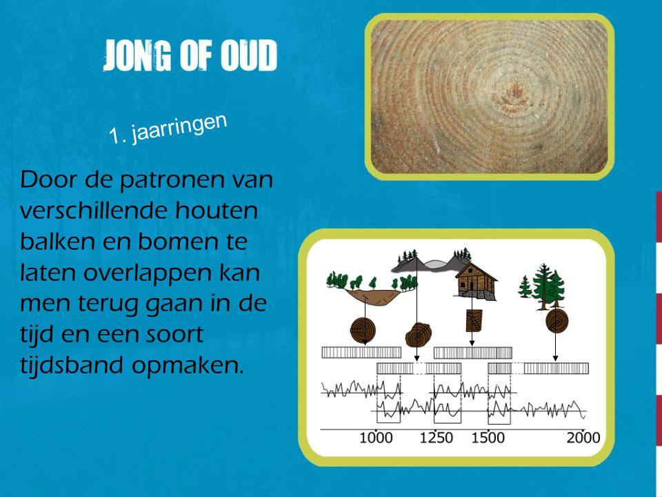 1. jaarringen Door de patronen van verschillende houten balken en bomen te laten overlappen kan men terug gaan in de tijd en een soort tijdsband opmak