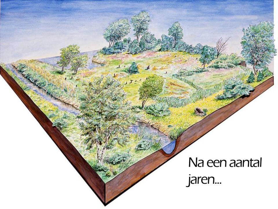 500 – 1500 n.C.-De grote leenheren bakenden hun eigendom af met tiendepalen.