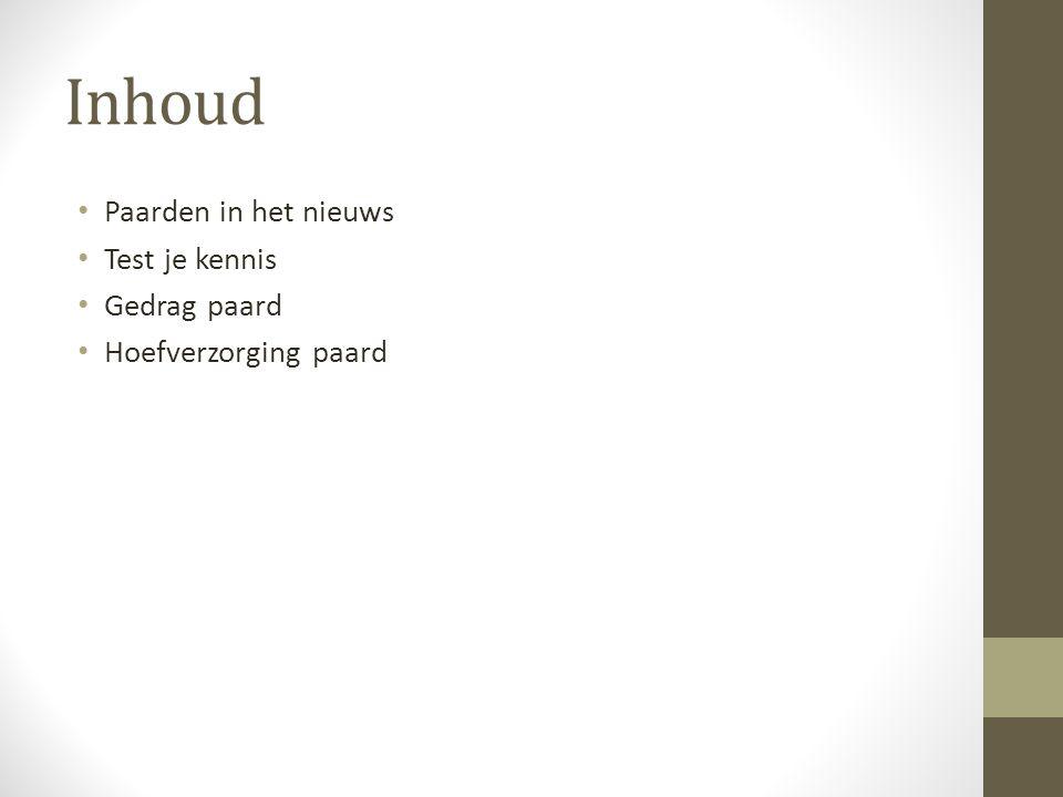 Paarden in het nieuws www.nu.nl 5 augustus 2014Blik op Nieuws - 18 okt.