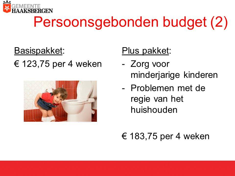 Persoonsgebonden budget (2) Basispakket: € 123,75 per 4 weken Plus pakket: -Zorg voor minderjarige kinderen -Problemen met de regie van het huishouden € 183,75 per 4 weken