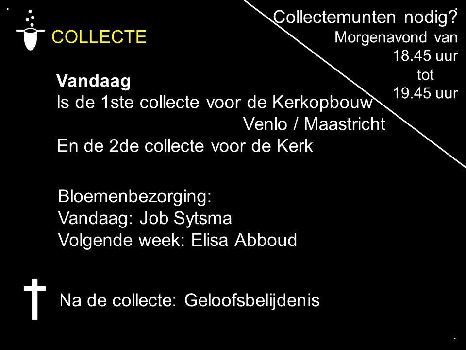 .... COLLECTE Vandaag Is de 1ste collecte voor de Kerkopbouw Venlo / Maastricht En de 2de collecte voor de Kerk Na de collecte: Geloofsbelijdenis Coll