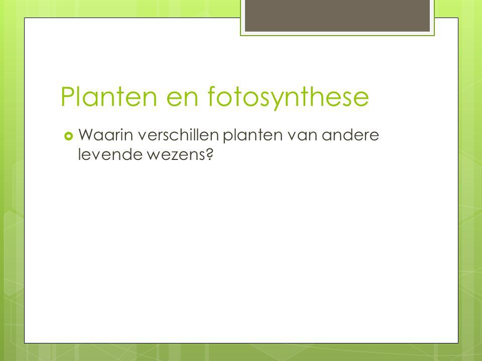 Planten en fotosynthese  Waarin verschillen planten van andere levende wezens?