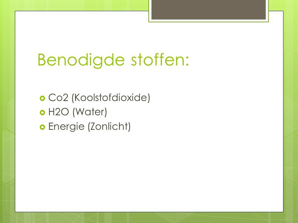 Benodigde stoffen:  Co2 (Koolstofdioxide)  H2O (Water)  Energie (Zonlicht)