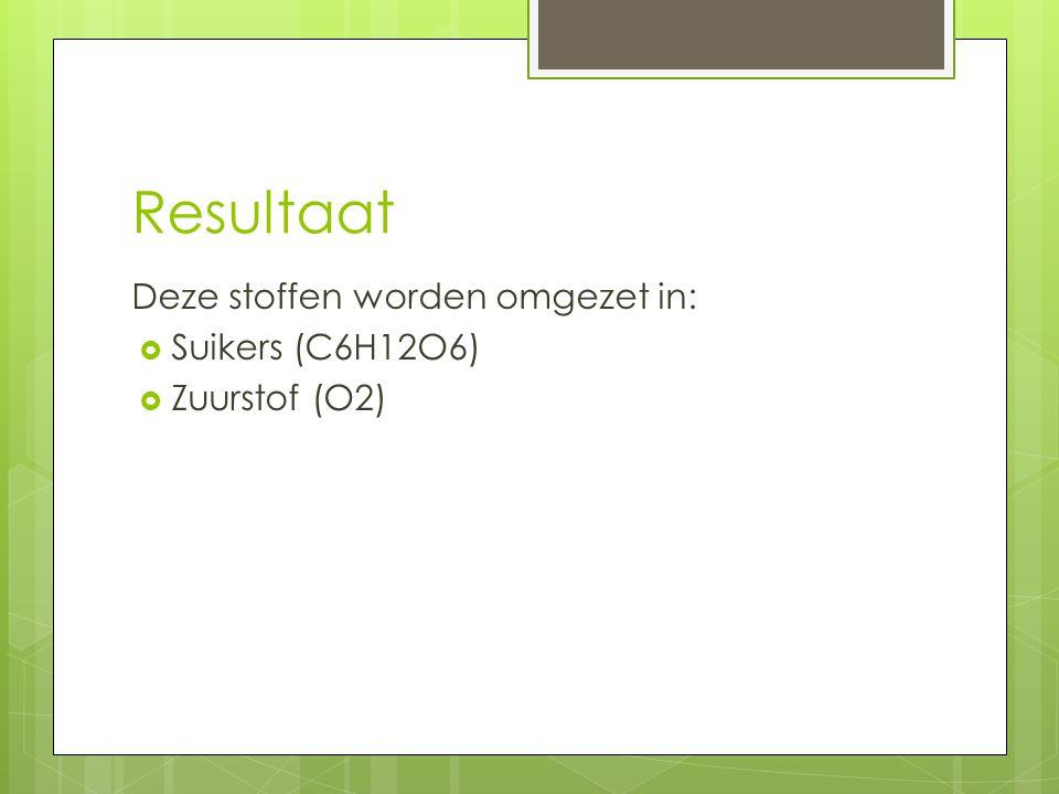 Resultaat Deze stoffen worden omgezet in:  Suikers (C6H12O6)  Zuurstof (O2)