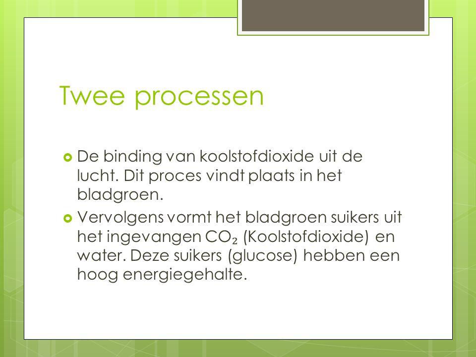 Twee processen  De binding van koolstofdioxide uit de lucht.