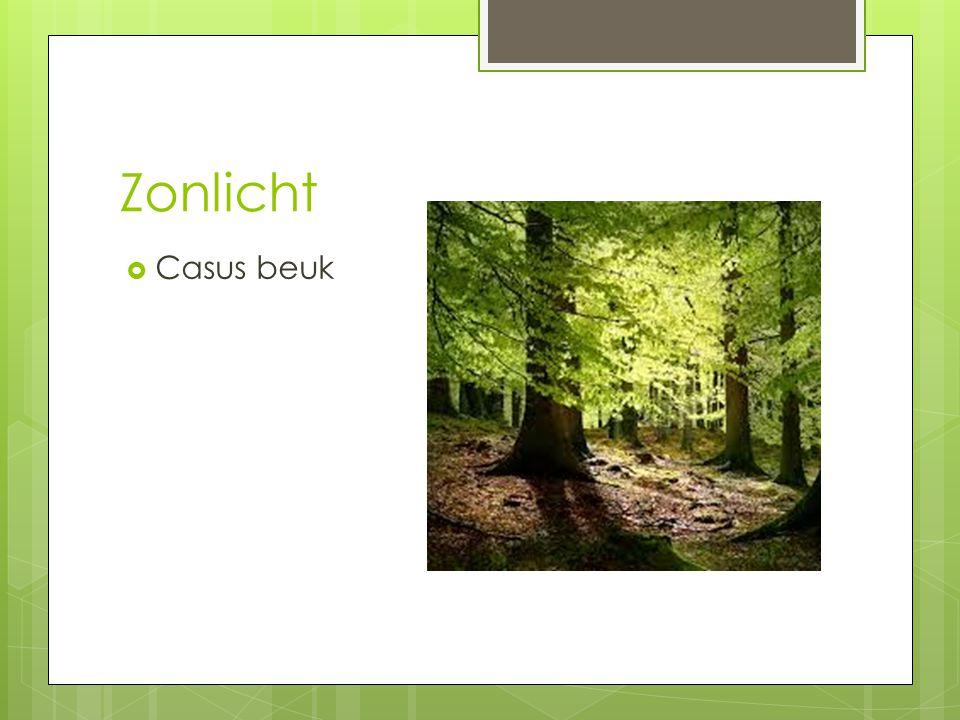  Oorzaak en gevolgen Fijnstof http://www.avn.nl/upload/doc uments/bomen/stadsbomen%2 0voor%20fijnstof.pdf